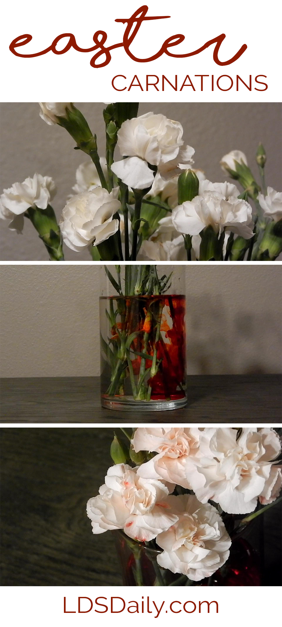 lds-object-lesson-easter-carnations