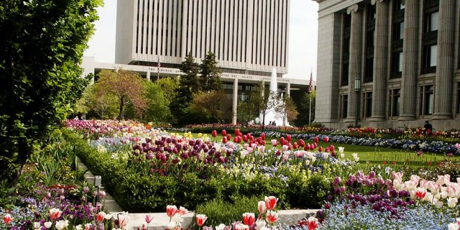 Major Workplace Changes Announced for Official LDS Employees