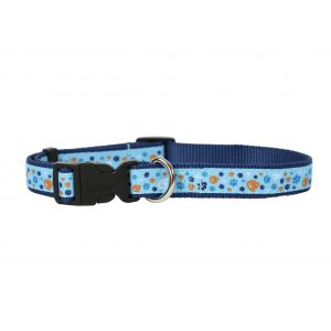 pet collar_blue