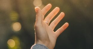 FHE Lesson on Gratitude - Praising God Through Pain