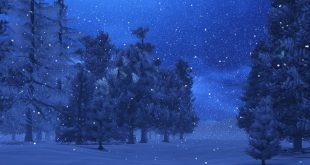10 Things You Didn't Know About Silent Night
