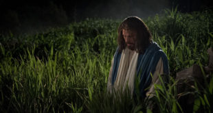 Jesus Suffers in Gethsemane | 18 April 2019