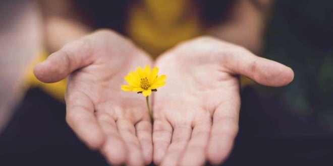 Finding Hope in Broken Dreams | 19 June 2019
