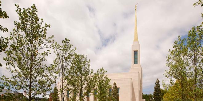 Temple News & Updates | Week of 18 August 2019