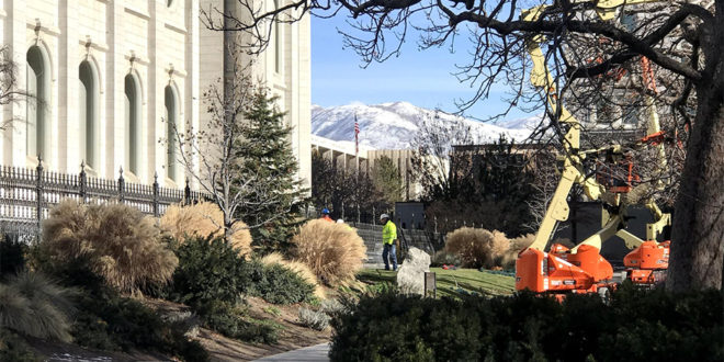 Temple News & Updates | Week of 12 January 2020