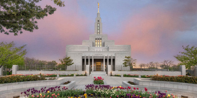 Temple News & Updates | Week of 24 May 2020