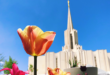 Temple News & Updates | Week of 30 August 2020