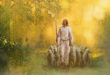 Book of Mormon FHE Lesson – One Fold and One Shepherd